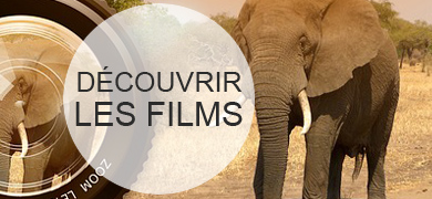Films documentaires 2016